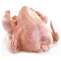 Тушка цыпленка-бройлера 1сорта охлажденный/замороженный